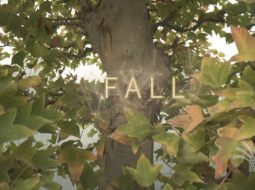 Fall short film Crespi Bonsai di Davide Calafà