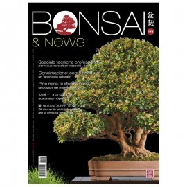 BONSAI & NEWS 172 -  MAR-APR 2019