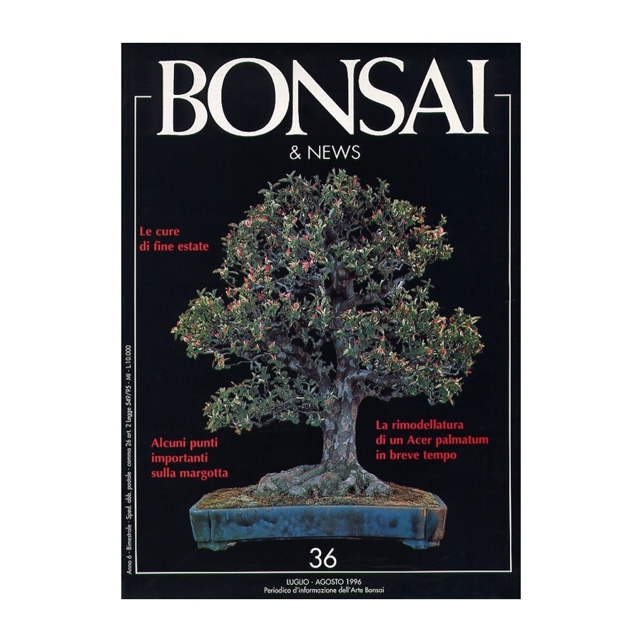BONSAI & NEWS 36 - LUG-AGO 1996