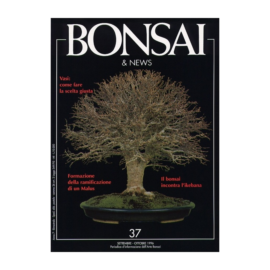 BONSAI & NEWS 37 - SET-OTT 1996