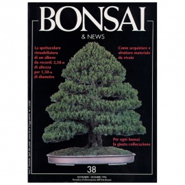 BONSAI & NEWS 38 - NOV-DIC 1996