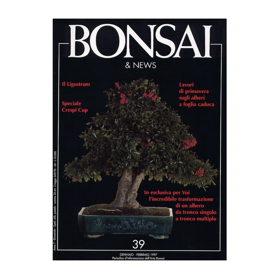 BONSAI & NEWS 39 - GEN-FEB 1997