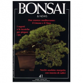 BONSAI & NEWS 41 - MAG-GIU 1997