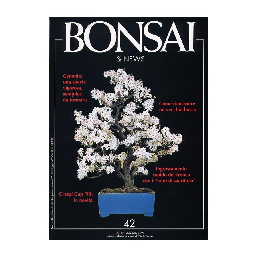 BONSAI & NEWS 42 - LUG-AGO 1997