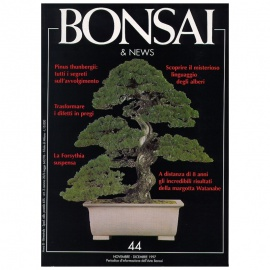 BONSAI & NEWS 44 - NOV-DIC 1997