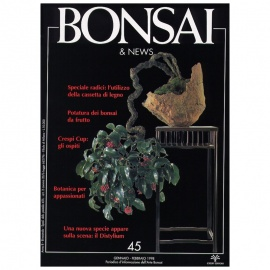 BONSAI & NEWS 45 - GEN-FEB 1998