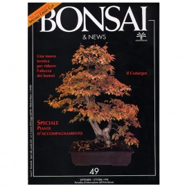 BONSAI & NEWS 49 SPECIALE BONSAI ERBACEI-KUSAMONO - SET-OTT 1998