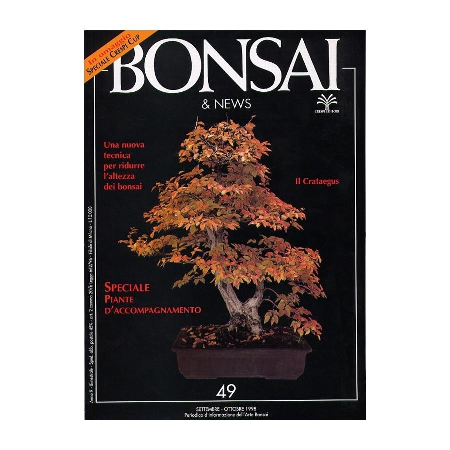 BONSAI & NEWS 49 SPECIALE BONSAI ERBACEI-KUSAMONO - SET-OTT 1998