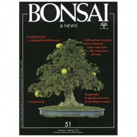 BONSAI & NEWS 51 - GEN-FEB 1999