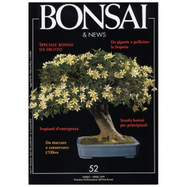 BONSAI & NEWS 52 SPECIALE BONSAI DA FRUTTO - MAR-APR 1999