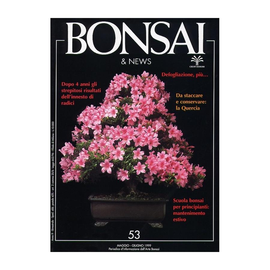 BONSAI & NEWS 53 - MAG-GIU 1999