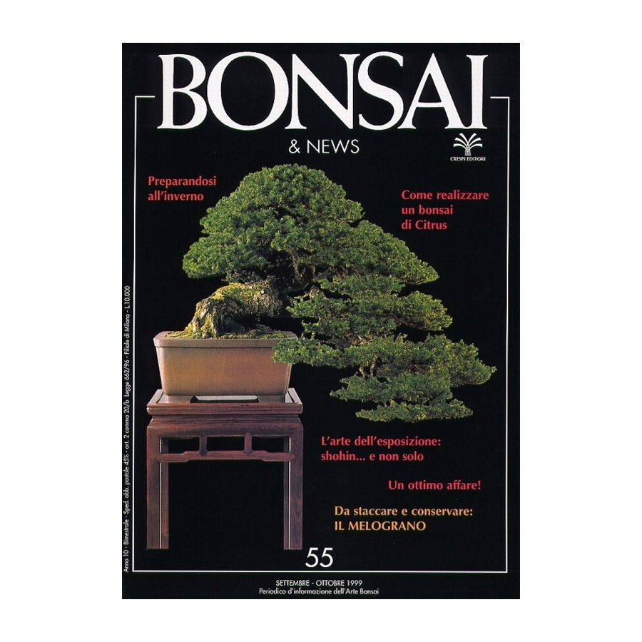 BONSAI & NEWS 55 - SET-OTT 1999