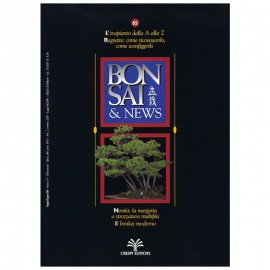 BONSAI & NEWS 65 - MAG-GIU 2001