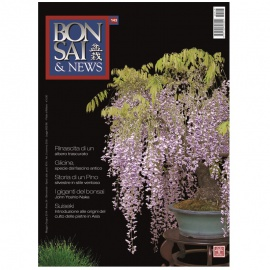 BONSAI & NEWS 143 - MAG-GIU 2014
