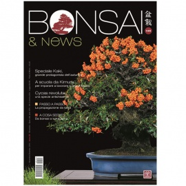 BONSAI & NEWS 146 - NOV-DIC 2014