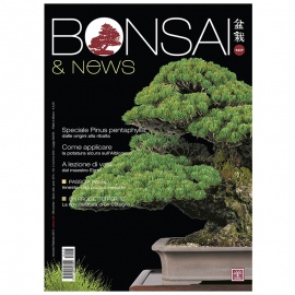 BONSAI & NEWS 147 - GEN-FEB 2015