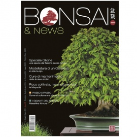 BONSAI & NEWS 149 - MAG-GIU 2015