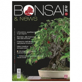 BONSAI & NEWS 151 - SET-OTT 2015