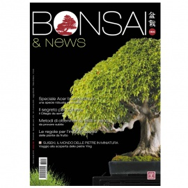 BONSAI & NEWS 154 - MAR-APR 2016