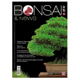 BONSAI & NEWS 155 - MAG-GIU 2016