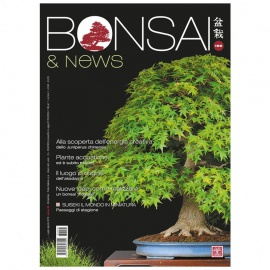 BONSAI & NEWS 156 - LUG-AGO 2016