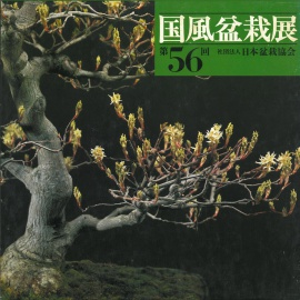 CATALOGO KOKUFU 56 BONSAI EXHIBITION - Anno 1982 Vintage Edition