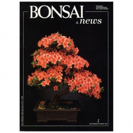 BONSAI & NEWS 1 - SET-OTT 1990