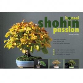 Bonsai Shohin Passion