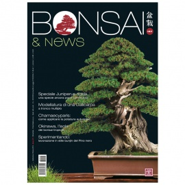 BONSAI & NEWS 157 - SET-OTT 2016