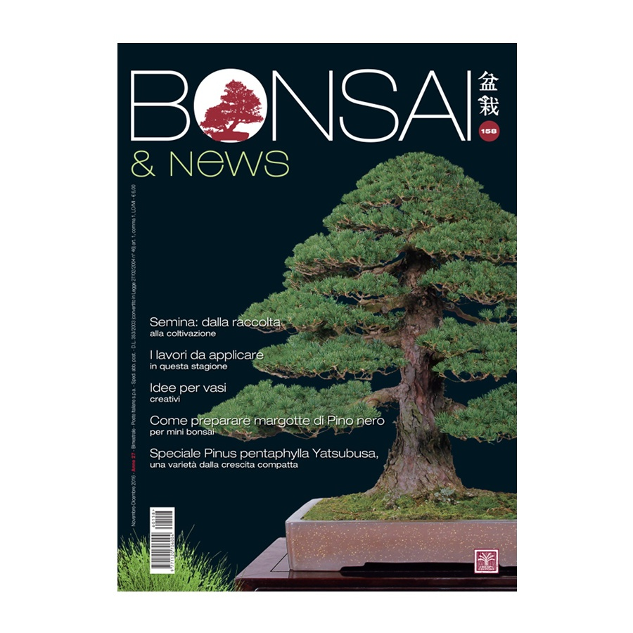 BONSAI & NEWS 158 - NOV-DIC 2016