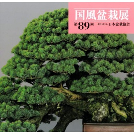 CATALOGO KOKUFU 89 BONSAI EXHIBITION - Anno 2015