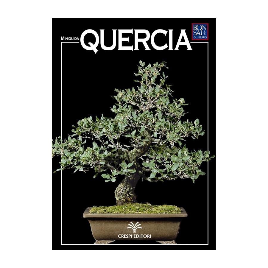 MINIGUIDA - Quercia
