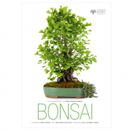 BONSAI - Crespi Bonsai Museum