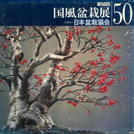 CATALOGO KOKUFU 50 BONSAI EXHIBITION - Anno 1976 Vintage Edition