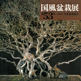 CATALOGO KOKUFU 53 BONSAI EXHIBITION - Anno 1979 Vintage Edition
