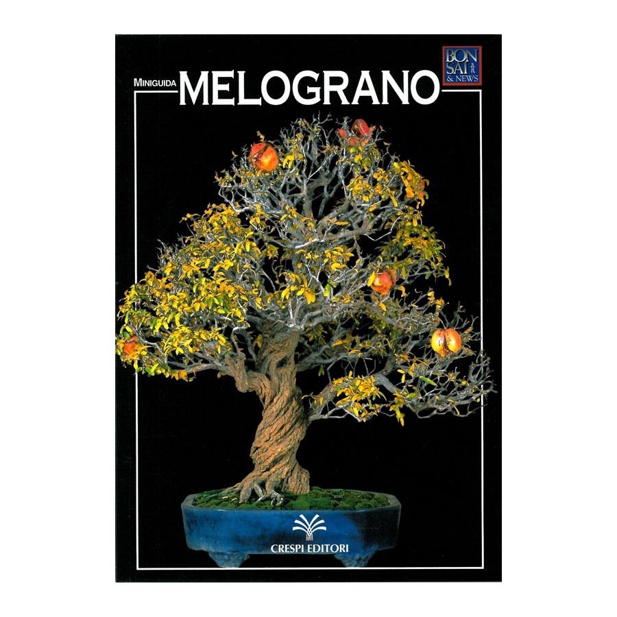 MINIGUIDA - Melograno