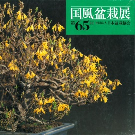 CATALOGO KOKUFU 65 BONSAI EXHIBITION - Anno 1991 Vintage Edition