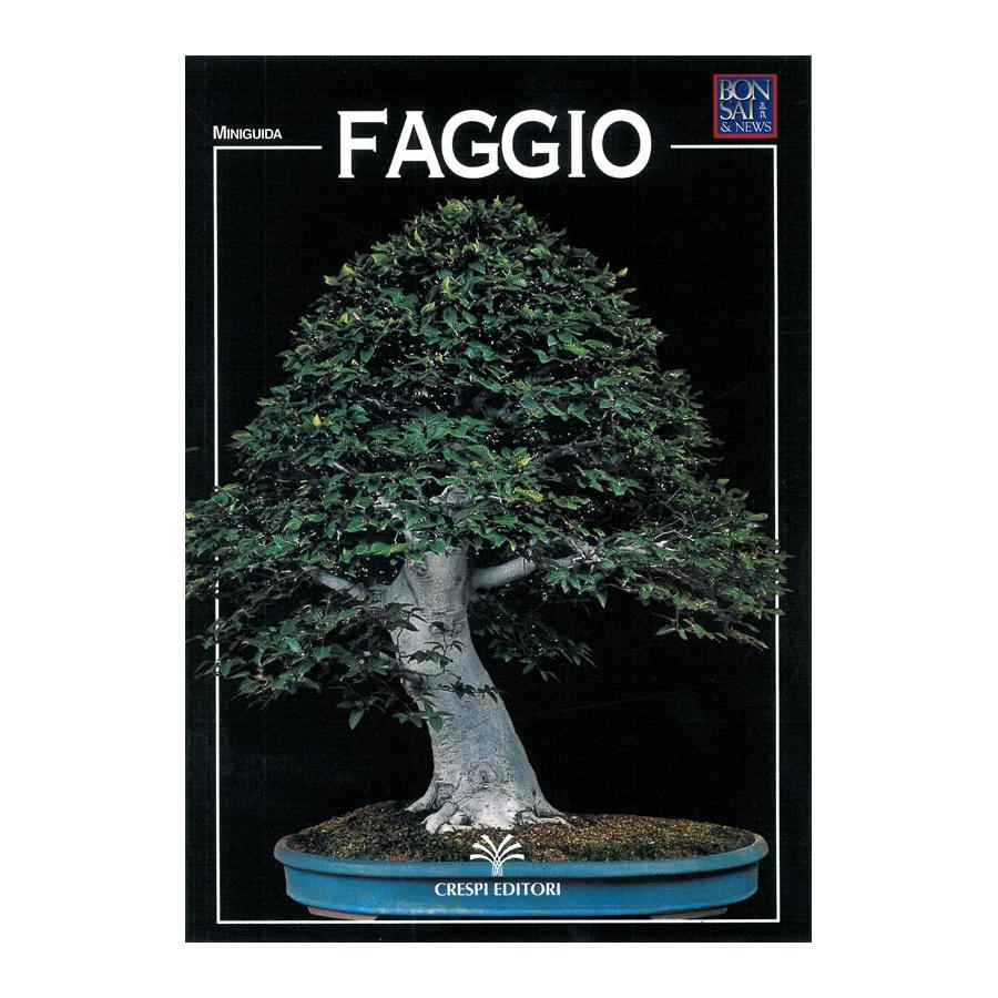 MINIGUIDA - Faggio