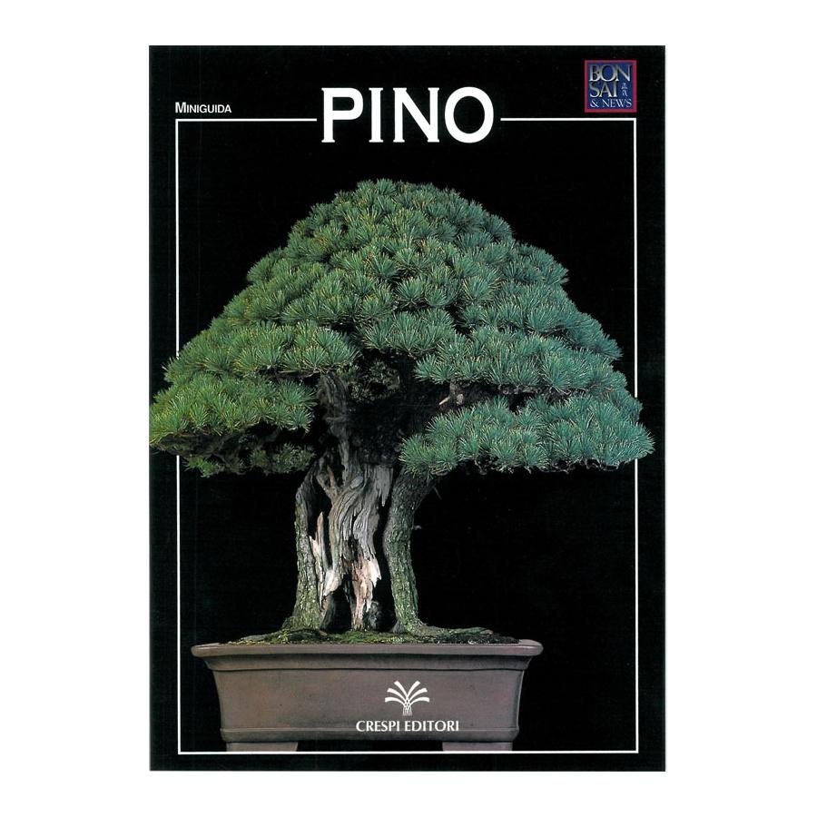 MINIGUIDA - Pino
