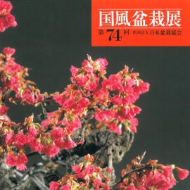 CATALOGO KOKUFU 74 BONSAI EXHIBITION - Anno 2000