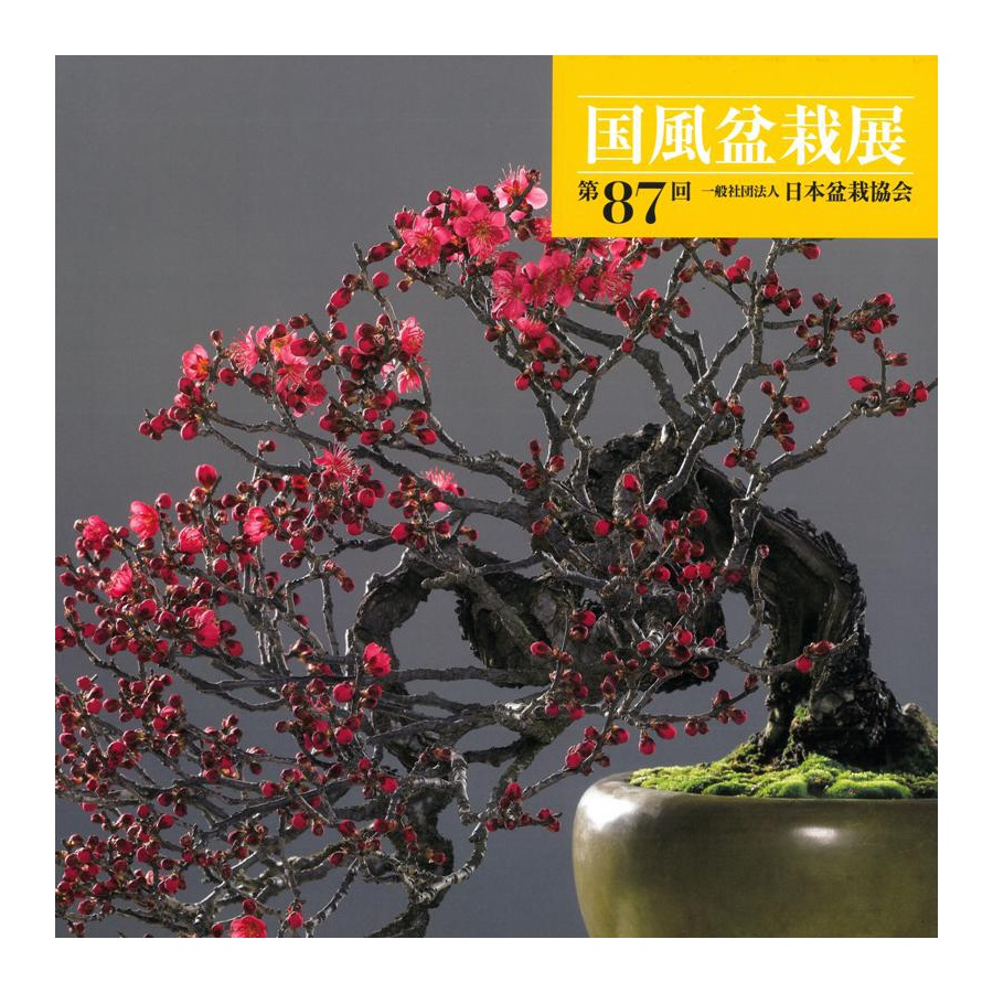 CATALOGO KOKUFU BONSAI EXHIBITION 87 - Anno 2013