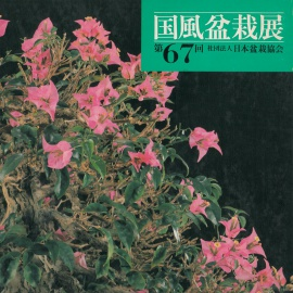 CATALOGO KOKUFU 67 BONSAI EXHIBITION - Anno 1993 Vintage Edition