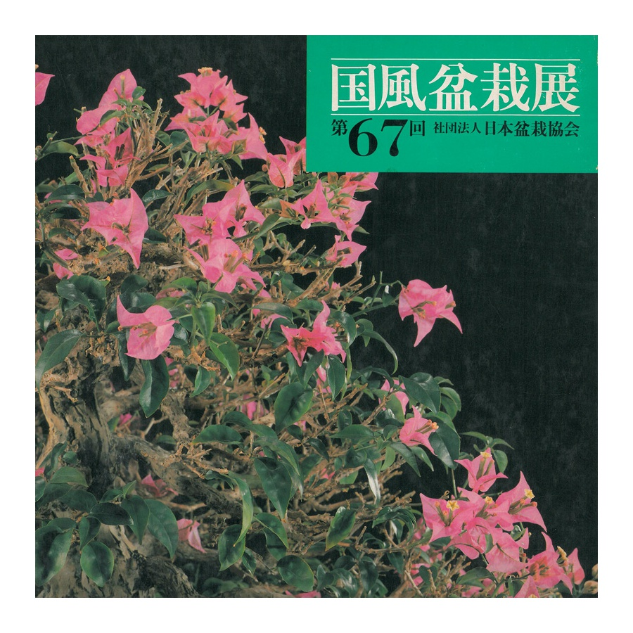 CATALOGO KOKUFU 67 BONSAI EXHIBITION - Anno 1993 Vintage Edition