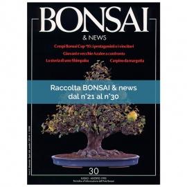 RACCOLTA BONSAI & NEWS DAL 21 AL 30