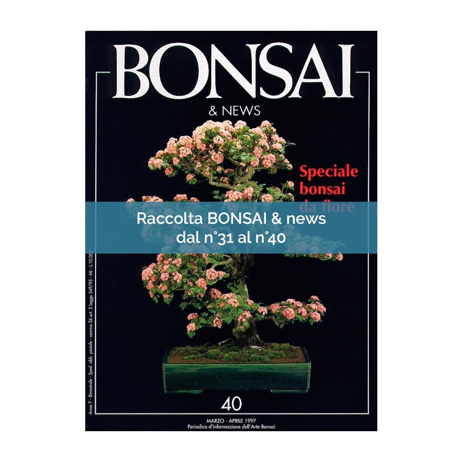 RACCOLTA BONSAI & NEWS DAL 31 AL 40