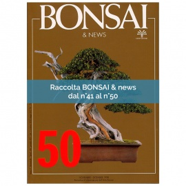 RACCOLTA BONSAI & NEWS DAL 41 AL 50