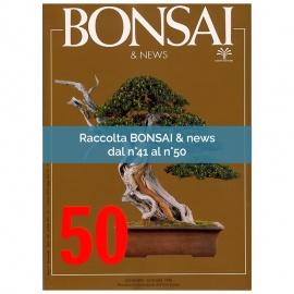 RACCOLTA BONSAI & NEWS DAL 41 AL 50