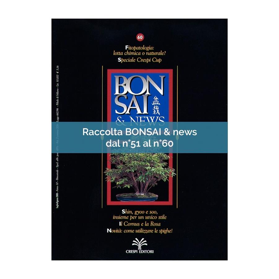 RACCOLTA BONSAI & NEWS DAL 51 AL 60