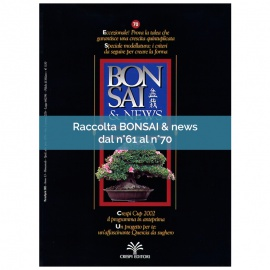 RACCOLTA BONSAI & NEWS DAL 61 AL 70