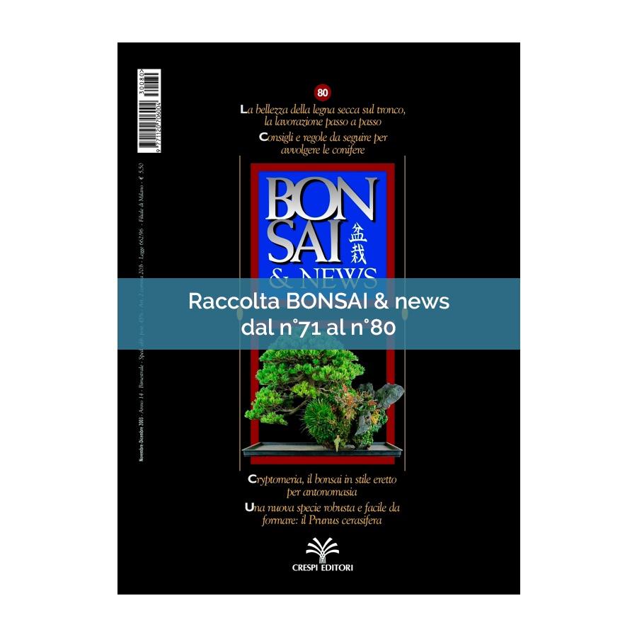 RACCOLTA BONSAI & NEWS DAL 71 AL 80